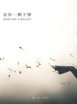 送你一颗子弹【 刘瑜】 风陵渡书屋