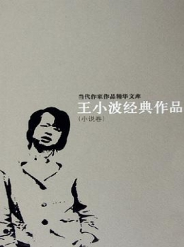 王小波作品经典合集【王小波】eybook.com